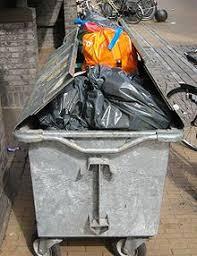 تمام زبالههای سطح شهر ارومیه به صورت مستقیم دفع میشود