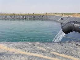 ۱۵۰ هزار قطعه انواع بچه ماهی کپور در استخرهای کشاورزی استان رها شد