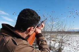 ممنوعیت شکار پرندگان در آذربایجان غربی