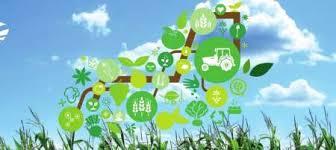 شرکتهای دانش بنیان ظرفیتهای ویژهای برای توسعه استان دارند