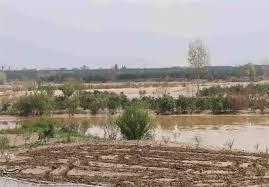 خسارت بیش از ۸۵۰ میلیارد تومانی به بخش کشاورزی استان