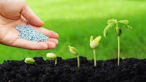 کودهای کشاورزی طبق برنامه توزیع میشود
