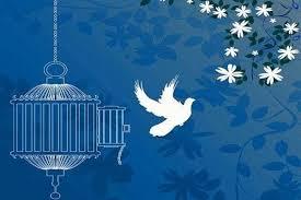 برگزاری گلریزان مجازی برای زندانیان ارومیه