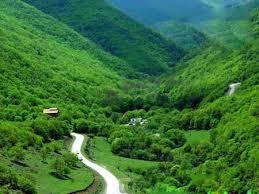 امسال هیچ یک از جنگل های استان دچار حریق نشده اند