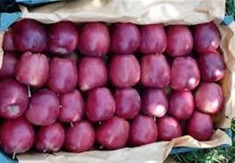 هیات ویتنامی جهت خرید سیب به ارومیه سفر می کند