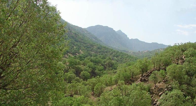 پیشرفت فیزیکی ۶۵ درصدی اجرای طرح بوم سازگان در آذربایجان غربی