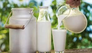 به دلیل شایعات فضای مجازی تقاضای مصرف شیر در آذربایجان غربی کاهش یافته است