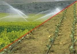 بیش از ۱۰۰۰ هکتار از اراضی کشاورزی آذربایجانغربی به آبیاری مدرن تجهیز شد