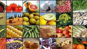 افزایش صادرات محصولات کشاورزی آذربایجانغربی