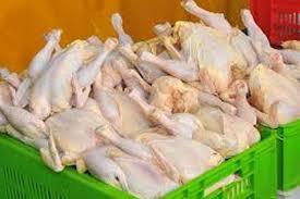 پیش بینی تولید ۱۰۲ هزار تن گوشت مرغ
