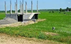 امنیت غذایی مستلزم تداوم بهره برداری از اراضی کشاورزی است