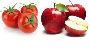 خرید حمایتی سیب و گوجه فرنگی استان به طور جدی پیگیری می شود