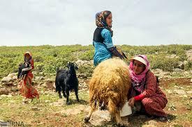 سه میلیارد ریال تسهیلات به صندوقهای زنان عشایری پرداخت می شود