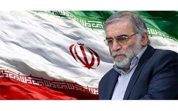 دشمنان بدانند شهادت فخریزادهها خللی در اراده ملت ایران ایجاد نمیکند