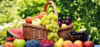 پیشبینی برداشت بیش از ۱۷۰ هزار تن میوه تابستانه از باغات استان