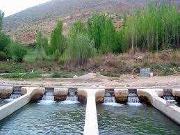 تولید بیش از ۱۶ هزارتن انواع ماهی در سطح آذربایجان غربی