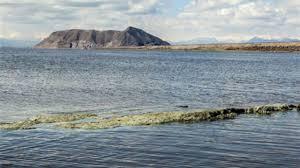فاز هفتم پروژه همکاری در احیای دریاچه ارومیه با استقرار کشاورزی پایدار آغاز شد